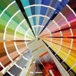 descarca paletarul de culori in format .pdf